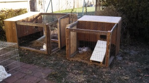 Our new rabbit hutches